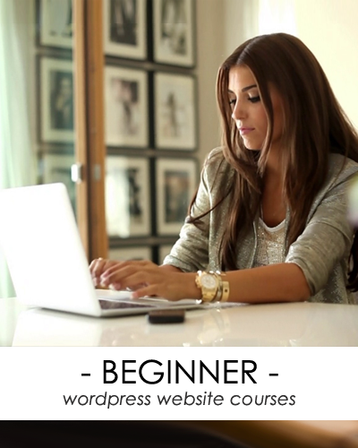 beginner wordpress website course