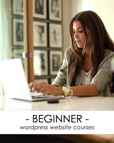 beginner wordpress website course